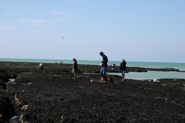 Vacances à Veulette-sur-Mer (76) avec Victoire et Elyte 1108101129421073068571071