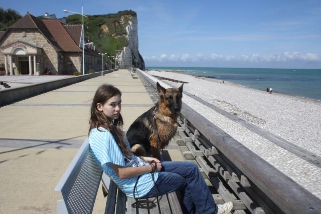 Re-socialiser un chien adulte: conseils? - Page 2 1108170943081073068601714