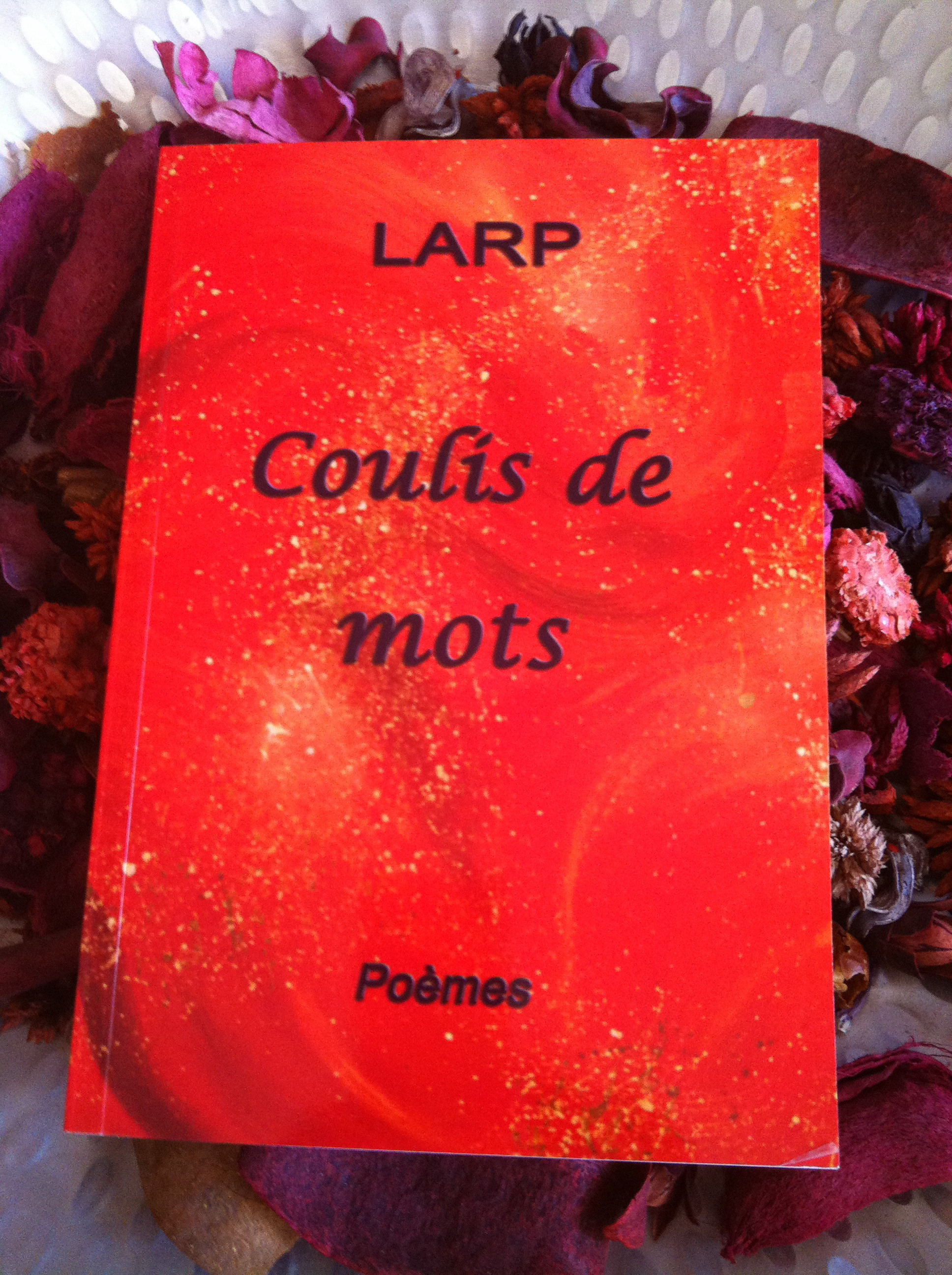 coulis--