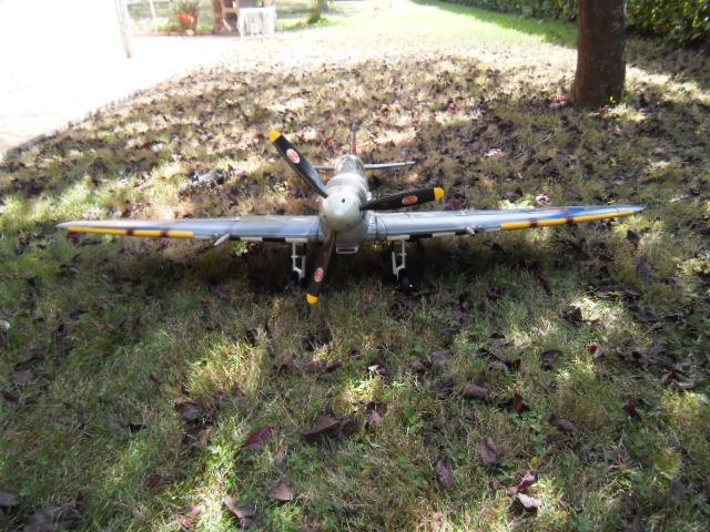 Spitfire FMS 110821022124197378618411