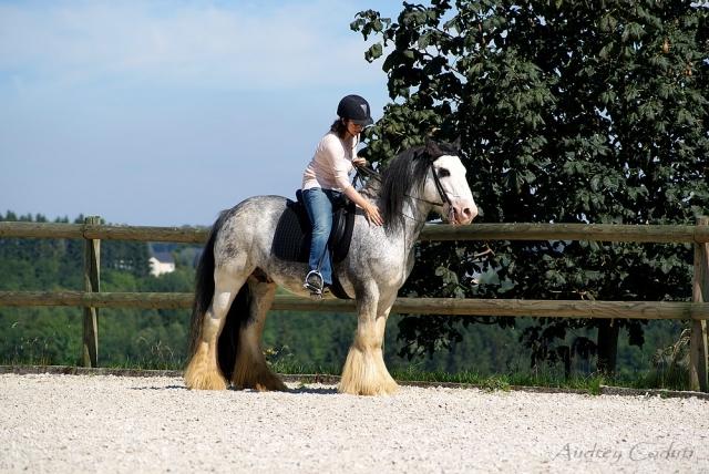 Votre style (ou dégaine) à cheval ? 110825095010803588637775