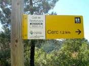 Collet de Bentanacs - ES-L-0990