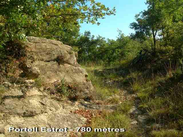 Portell Estret - ES-B- 780 mètres
