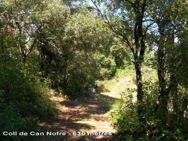 Coll de Can Nofre - ES-GI-0630