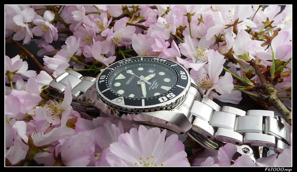 Choix montre pour quelqu'un qui n'y connait pas grand' chose en montres de plong 1109280701401388898811071