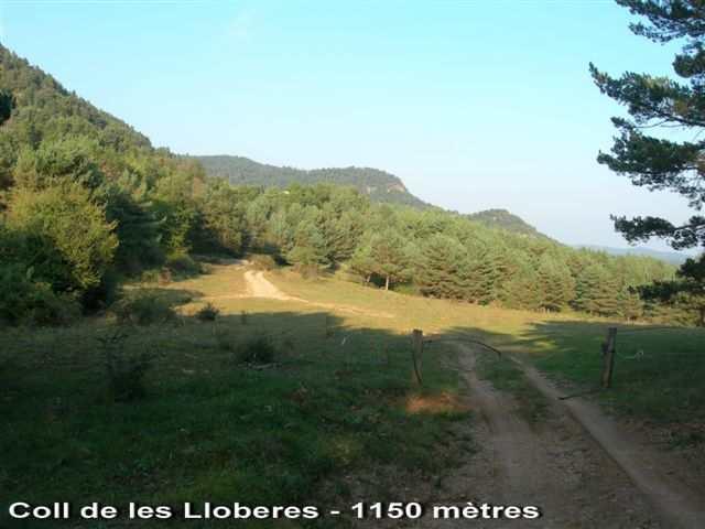 Coll de les Lloberes - ES-B-1150f