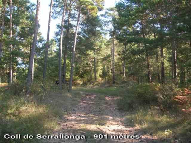 Coll de Serrallonga - ES-B-0901a