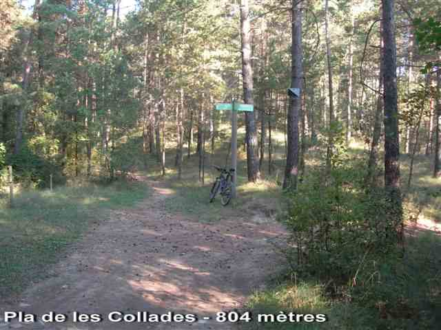 Pla de les Collades - ES-B-0804