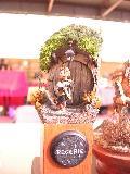 Salon orléanais 2011 - Page 3 Mini_111002101128773688835085