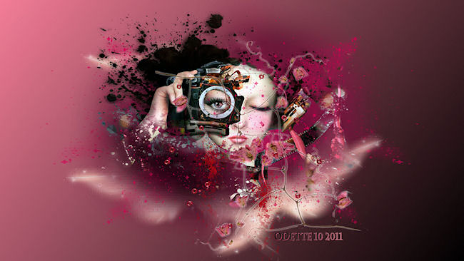 fecranphoto