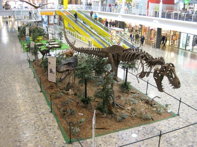2011 : Les Dinosaures 111029094438185828971856