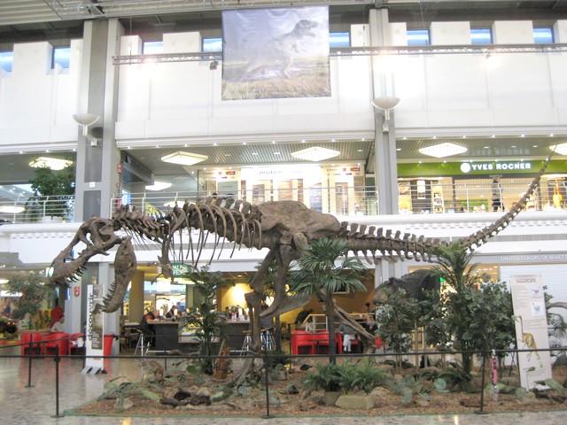 2011 : Les Dinosaures 111029094438185828971857