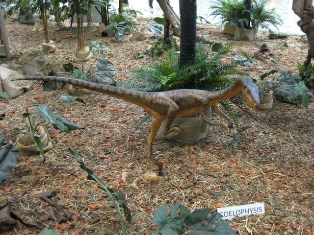 2011 : Les Dinosaures 111029094438185828971859