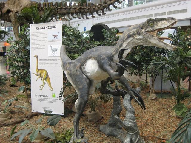 2011 : Les Dinosaures 111029094439185828971860