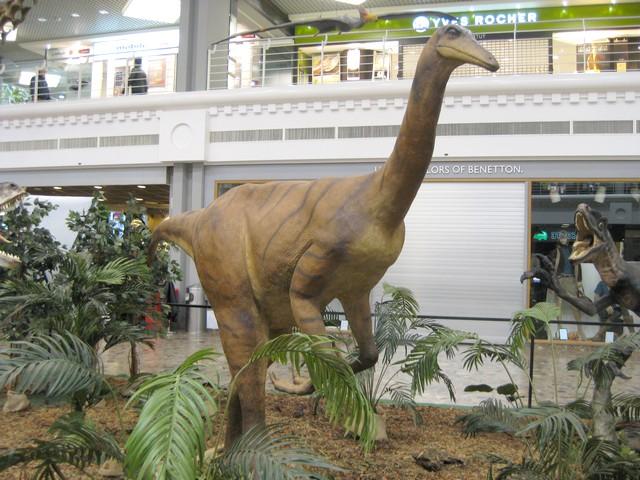 2011 : Les Dinosaures 111029094439185828971861
