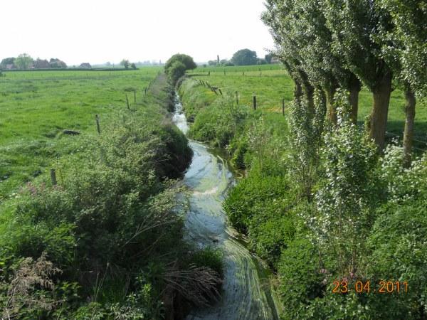 Vlaamse Euvo-borden - Pagina 4 1203211206081419619610882