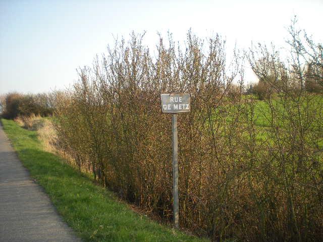 de Vlaamse toponymie 1204040820151419619670810