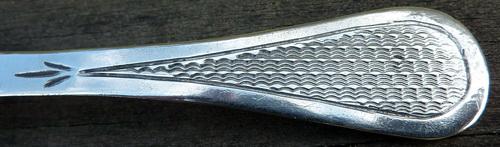 P1110199ms