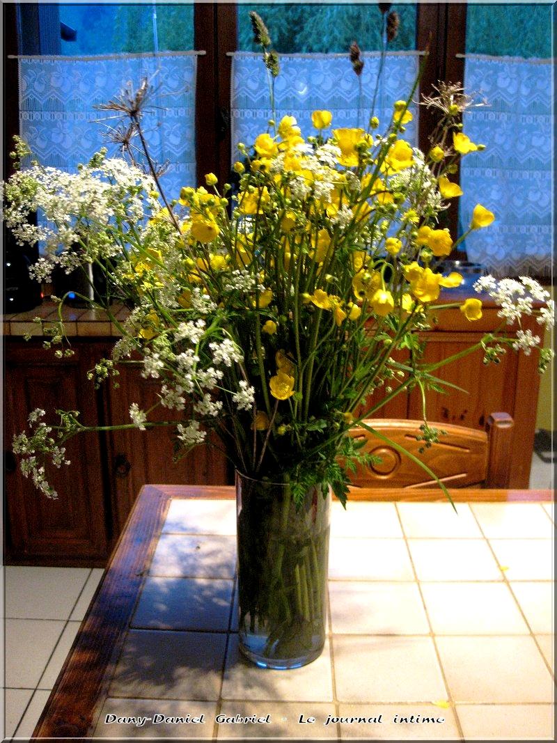 fleurs sauvages alpes,