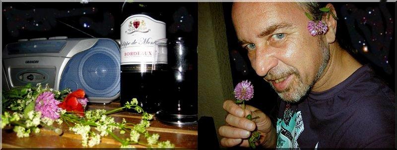 dany daniel gabriel vin fleurs musique