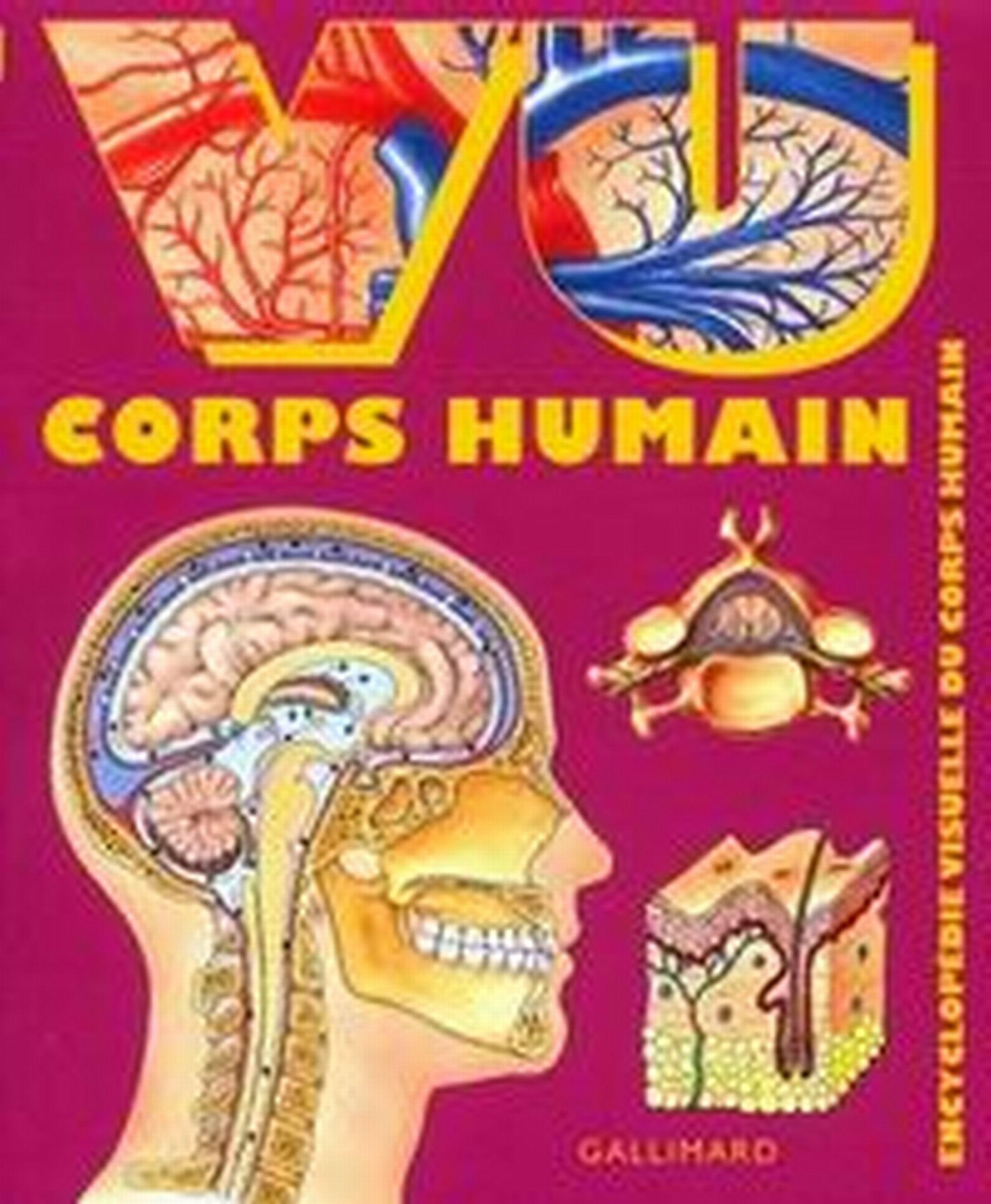 VU CORPS HUMAIN   [PDF l MULTI]