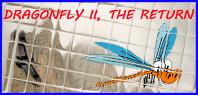 logo Dragonfly 4
