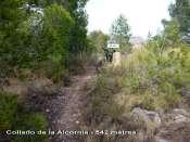 Collado de la Alcornia - ES-A-0542