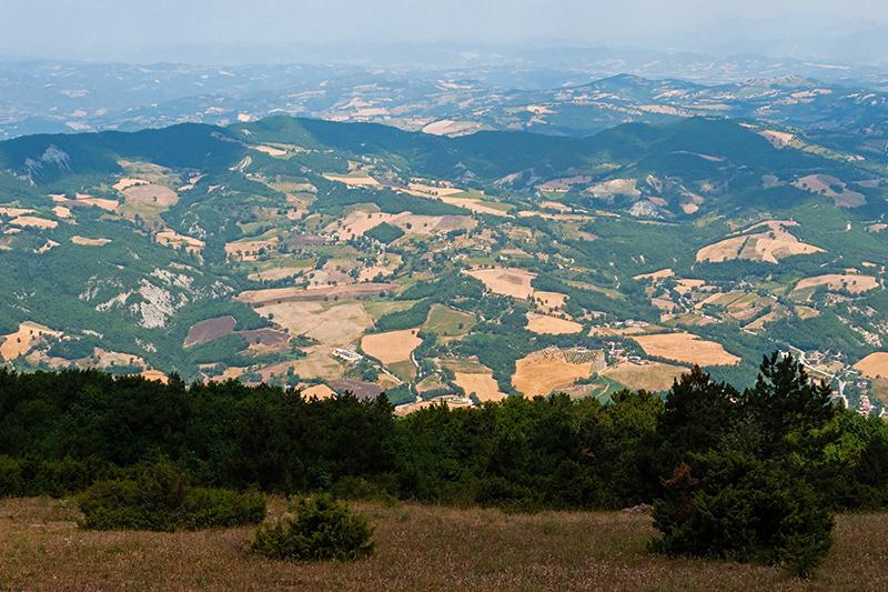 Les pèlerins du Mont Subasio 12081303073914335310204897