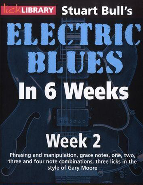 12081306212013799910207041 [Guitare] Learn Electric Blues Guitar in 6 Weeks   DVDRIP xVid English