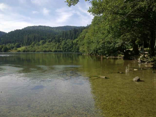 Le lac de Longemer 12081412021111002110209131