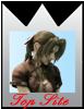 Kingdom Hearts: L'aube du crépuscule 1208190651382485610225248