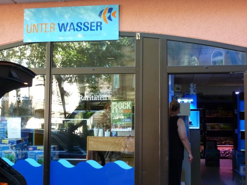 UnterWasser, Freiburg, Allemagne 120822101904686910235671