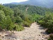 Col de la Balme - FR-34-0570c