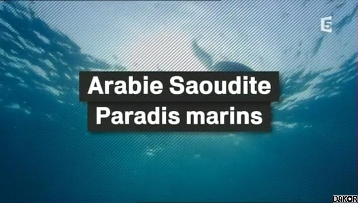 Site de rencontre arabie saoudite gratuit