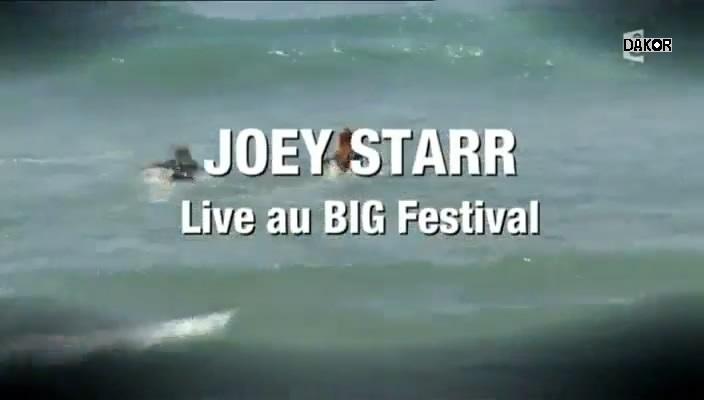 JoeyStarr - Live au BIG Festival 2012 [TVRIP]