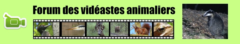 Forum des videastes animaliers
