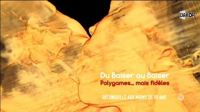 Du baiser au baiser - Polygames... mais fidèles - 23/10/2012 [TVRIP]
